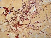 Fond de marbre crème de texture Photos stock
