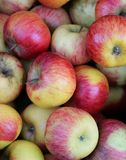 fond de marché de fruits local d'ath mûr rouge de pommes Images stock