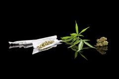 Fond de marijuana images stock