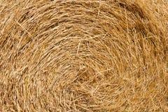 Fond de meules de foin de blé. Photographie stock libre de droits