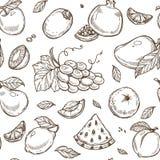 Fond de modèle de croquis de fruits Conception sans joint illustration stock