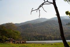 Fond de montagne de vue de lac Photo stock