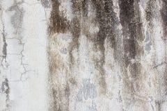 Fond de mur de vintage de ciment naturel Photographie stock