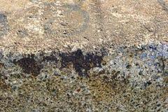 Fond de mur en béton texturisé Photo libre de droits