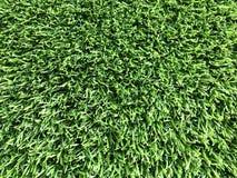 Fond de mur de jardin d'herbe verte images libres de droits