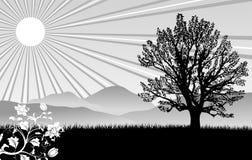 Fond de nature illustration de vecteur