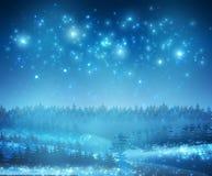 Fond de neige d'hiver avec des étoiles et des arbres de nuit illustration stock
