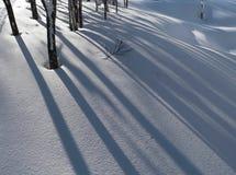 Fond de neige de l'hiver Photographie stock libre de droits