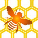 Fond de nid d'abeilles d'abeille - illustration Photo libre de droits