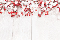 Fond de Noël avec des baies Images stock
