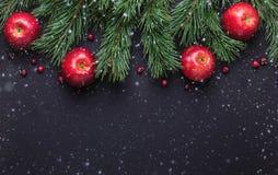 Fond de Noël avec des branches d'arbre, des pommes rouges et des canneberges Table en bois foncée Chutes de neige dessinant l'eff image libre de droits