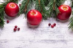 Fond de Noël avec des branches d'arbre, des pommes rouges et des canneberges Table en bois légère photo libre de droits
