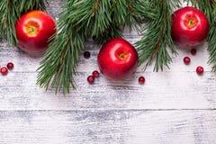 Fond de Noël avec des branches d'arbre, des pommes rouges et des canneberges Table en bois légère image stock