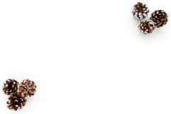 Fond de Noël avec des cônes de pin Photographie stock
