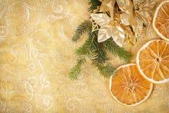 Fond de Noël avec des pointeaux et des parts oranges image stock
