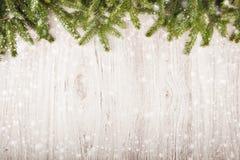 Fond de Noël avec les branches impeccables Image stock