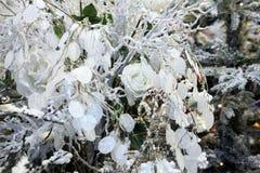 Fond de Noël avec les fleurs et le décor Photographie stock libre de droits
