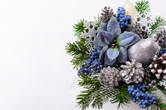 Fond de Noël avec les poinsettias en soie bleues et le glitt argenté Images libres de droits