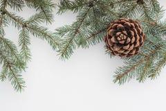 Fond de Noël Branches d'arbre de sapin avec le cône de pin sur la neige blanche photographie stock