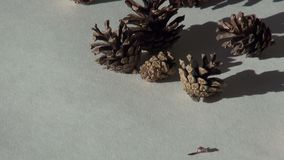 Fond de Noël de cône de sapin banque de vidéos