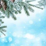 Fond de Noël d'hiver avec la branche d'arbre de sapin Photo stock