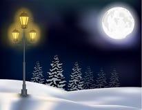Fond de Noël de paysage de forêt d'hiver Image libre de droits