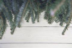 Fond de Noël en bois léger ou de nouvelle année avec des branches d'arbre de sapin Images stock
