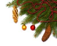 Fond de Noël Vue supérieure avec l'espace de copie arbre de sapin avec le cône d'isolement sur le fond blanc Photos libres de droits