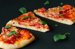 Fond de noir de pizza de mozarella de salami de trois tranches images libres de droits