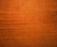 Fond de noix Image libre de droits