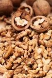 Fond de noix Photos libres de droits