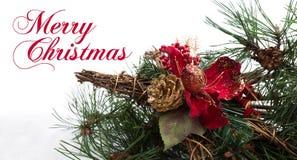 Fond de Noël avec la branche de pin, cônes de pin, fleur rouge dans la neige Images stock
