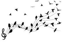 Fond de notes musicales d'oiseaux illustration libre de droits