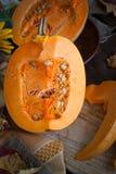 Fond de nourriture d'automne photo libre de droits