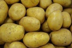 Fond de nourriture - pommes de terre d'or Photo stock