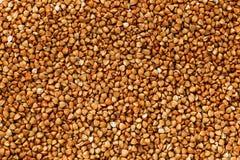 Fond de nourriture de sarrasin Céréales utiles pour des végétariens photo libre de droits