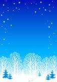 Fond de nuit de l'hiver Photographie stock libre de droits