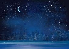 Fond de nuit du pays des merveilles d'hiver de vecteur Photographie stock
