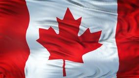 Fond de ondulation alistic de drapeau de CANADA Photographie stock