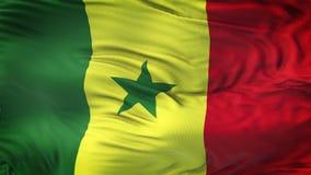 Fond de ondulation réaliste de drapeau du SÉNÉGAL Photos libres de droits