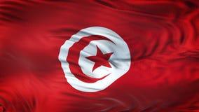 Fond de ondulation réaliste de drapeau de la TUNISIE Images stock