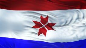 Fond de ondulation réaliste de drapeau de MOLDOVIA Image stock