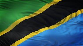Fond de ondulation réaliste de drapeau de TANZAINIA Photos stock