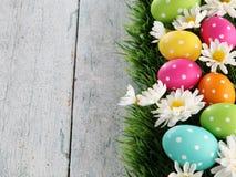 Fond de Pâques avec l'herbe Images stock