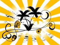 Fond de palmier Images stock