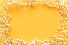 Fond de papier jaune lumineux avec de petites fleurs blanches molles, concept bienvenu de ressort Jour de mères heureux, carte de images stock