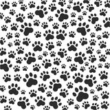 Fond de pattes de chat ou de chien Vecteur Images libres de droits