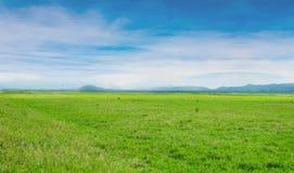 Fond de paysage de nature Photo libre de droits