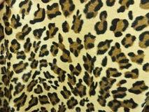 Fond de peau de léopard Images libres de droits