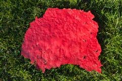 Fond de peinture épluché par rouge Photo libre de droits